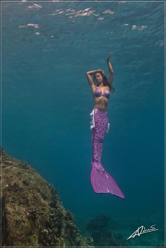 Traumjob Meerjungfrau - Tauchen gehört dazu