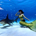 Meerjungfrau und Hai