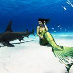 Meerjungfrau und Hammerhai
