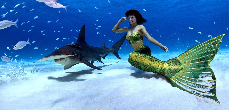 Unterwassermodel schwimmt mit Haien