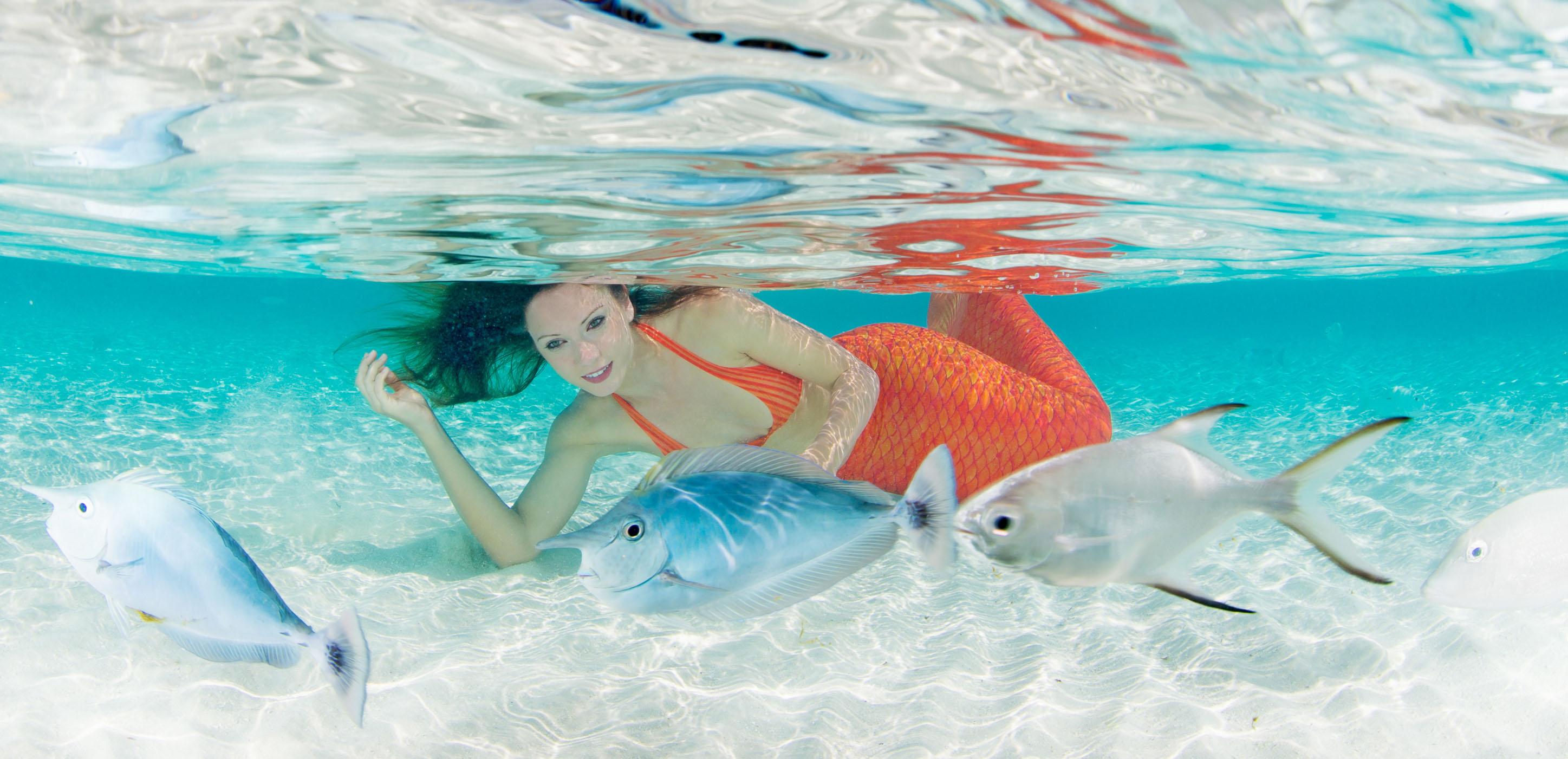 Werde eine Meerjungfrau bei Mermaid Kat
