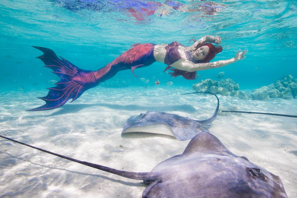 Traumjob Meerjungfrau und Unterwassermodel - Foto von Ian Gray