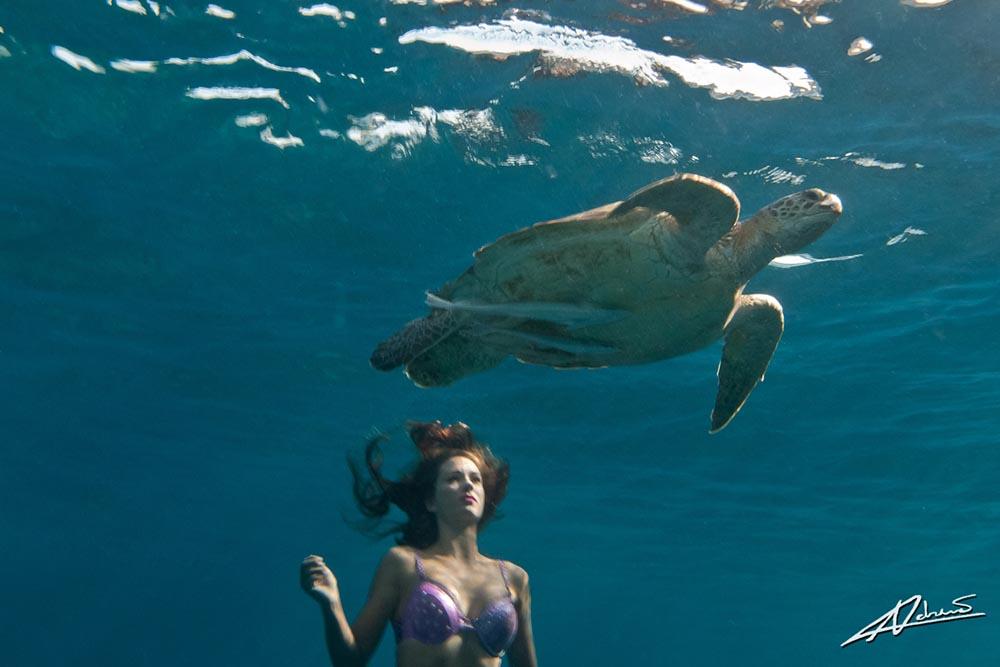 Traumjob Meerjungfrau und Unterwassermodel