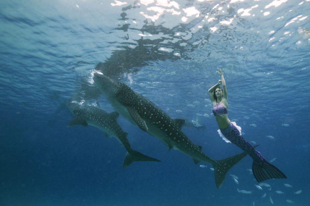 Von Beruf Meerjungfrau und Unterwassermodel