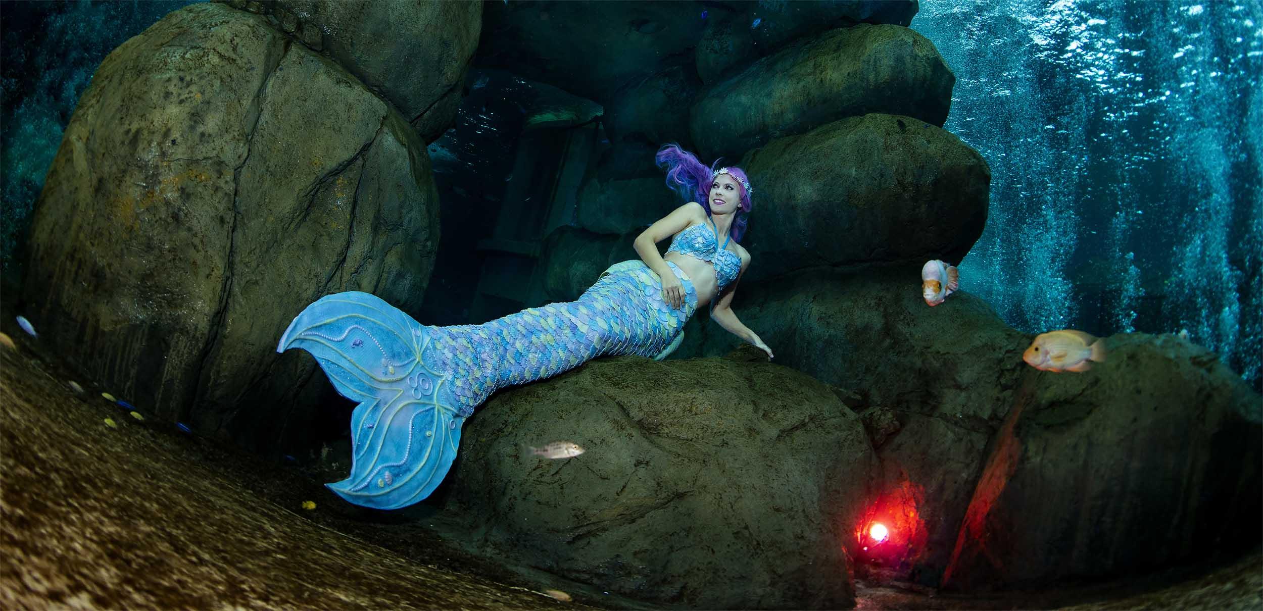 Mermaid Kat arbeitet als professionalle Meerjungfrau und Unterwassermodel