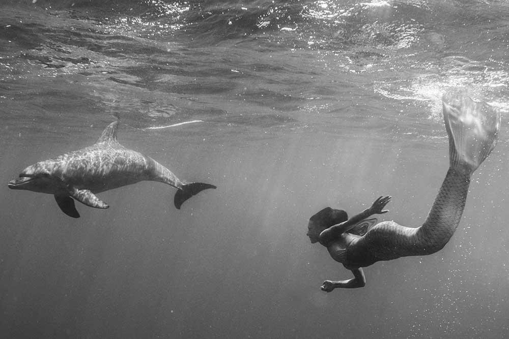 Unterwasser Meerjungfrauen Fotoshooting mit Delfinen in Ägypten