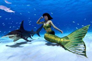 Unterwasser Meerjungfrauen Fotoshooting mit Haien - Mermaid Kat