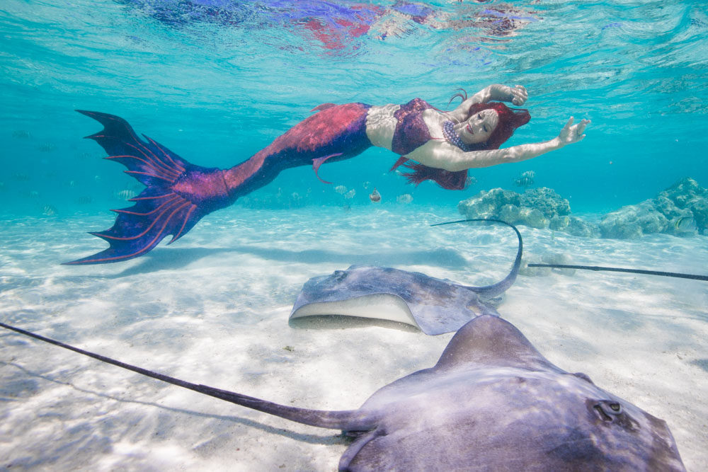 Unterwassershooting mit professioneller Meerjungfrau Mermaid Kat und Rochen