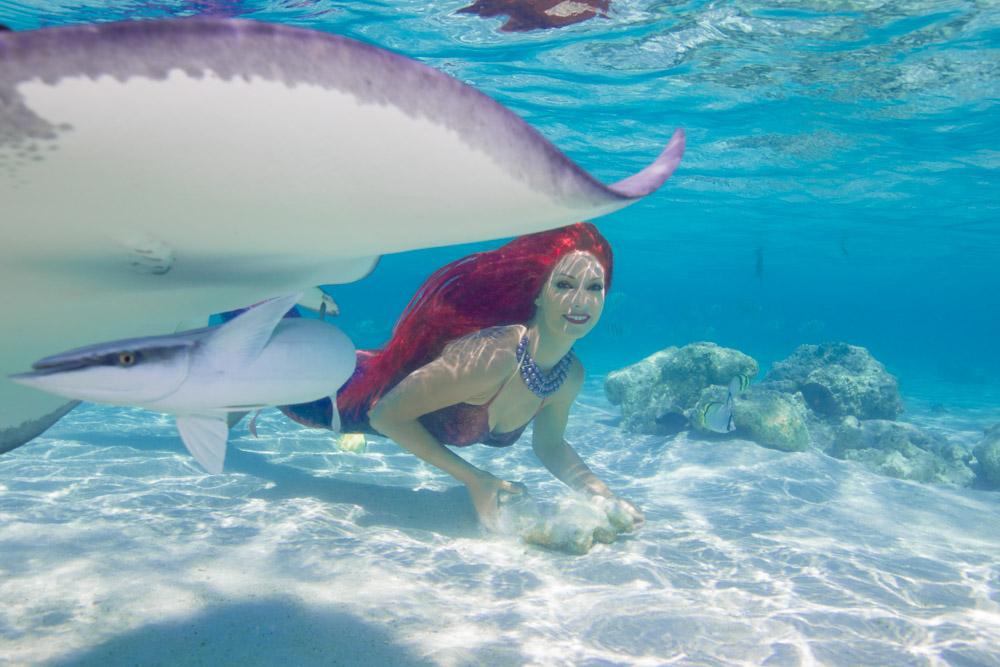 Meerjungfrauen-Fotoshooting mit Rochen - Foto von Ian Gray