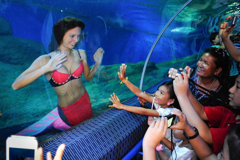 Hier kannst du eine Meerjungfrau buchen - Unterwassershows